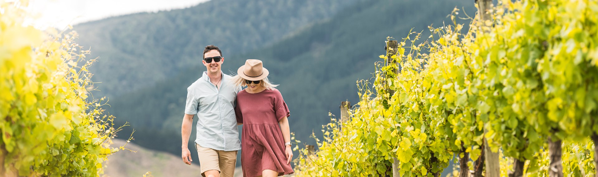 Couple arm in arm walking in a vineyard between rows of grapes as part of wine tours in Marlborough, at the top of New Zealand's South Island