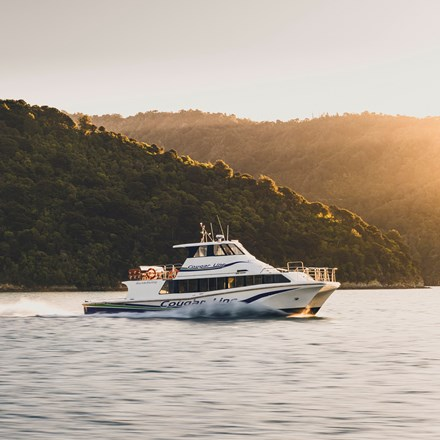 Boat cruises through the Marlborough Sounds at sunset, New Zealand.
