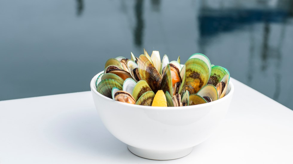 A bowl of freshly steamed Greenshell mussels on a boat with water behind, at Havelock Marina at the top of New Zealand's South Island.
